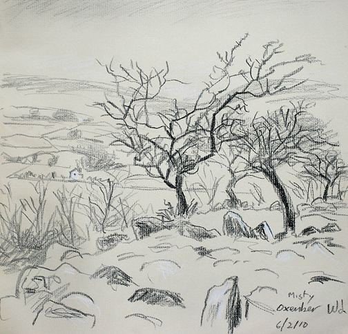 Oxenber Wood, Feizor. Misty. Sketch- Keith Melling
