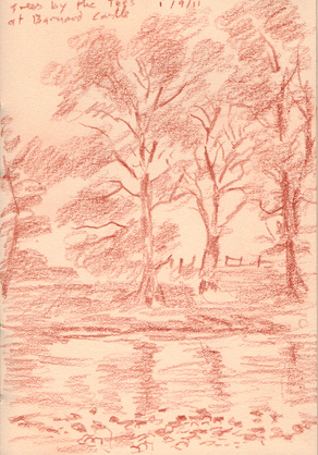 Trees by the Tees at Barnard castle, Teesdale. Sketch: Keith Melling