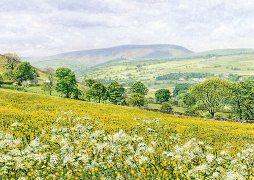 Pendle Hill from Cob Lane. Painting : Keith Melling