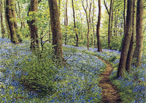 Spring Wood, Whalley, Lancashire. Painting : Keith Melling