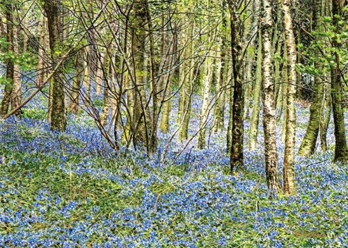 Old Orchard Wood - Lake District. Painting : Keith Melling