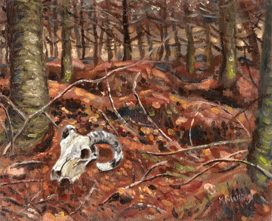 Sheep Skull in Churn Clough Wood, Sabden, Lancashire. Painting: Keith Melling