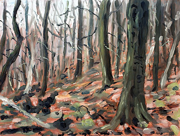 In Boothman Wood II, Barley, Lancashire. Sketch: Keith Melling