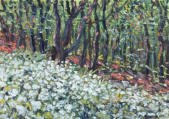 Ramsons in Boothman Wood, Barley, Lancashire. Painting: Keith melling