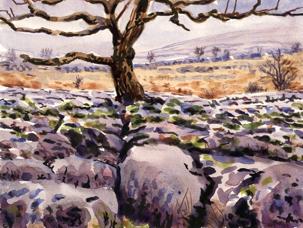 Limestone Pavement above Conistone Dib, Yorkshire Dales. Artist: Keith Melling