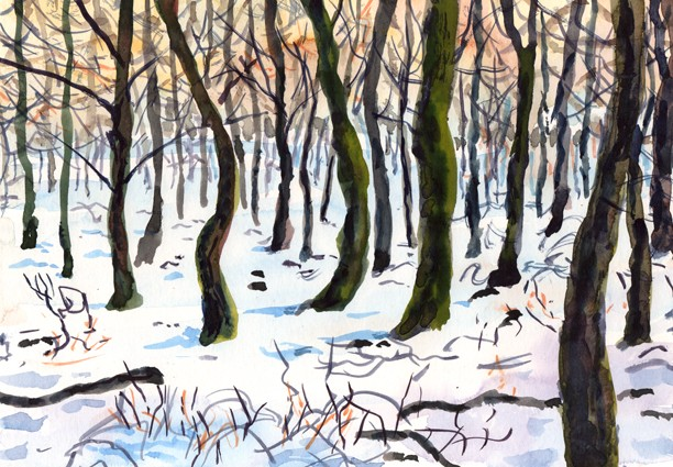 Memory of a winter walk through Boothman Wood, Barley, Lancashire. Artist: Keith Melling