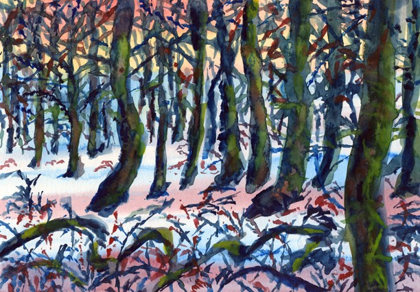 Memory of a winter walk through Boothman Wood II, Barley, Lancashire. Artist: Keith Melling