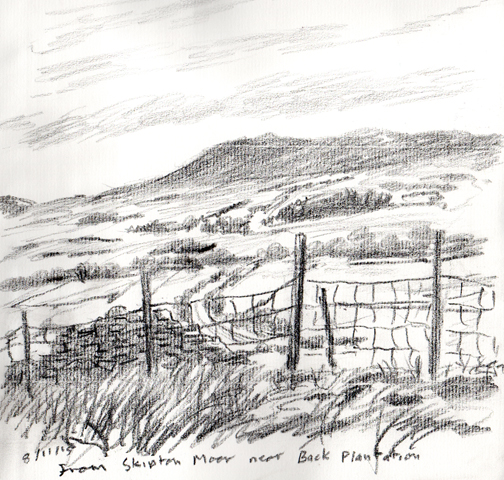 From Skipton Moor near Back Plantation. Sketch Keith Melling