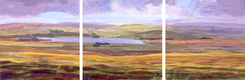 Malham Tarn from Nappa Cross. Artist : Keith Melling