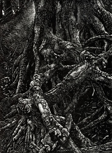 Roots. Wood engraving. Artist Keith Melling