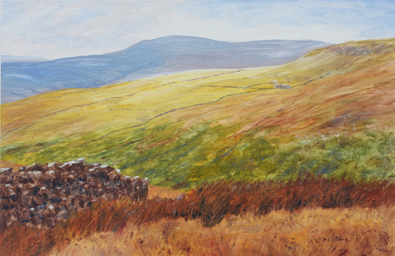 Above Dowber Gill near Kettlewell, looking to Hag Dike and Buckden Pike. Paiting Keith Melling