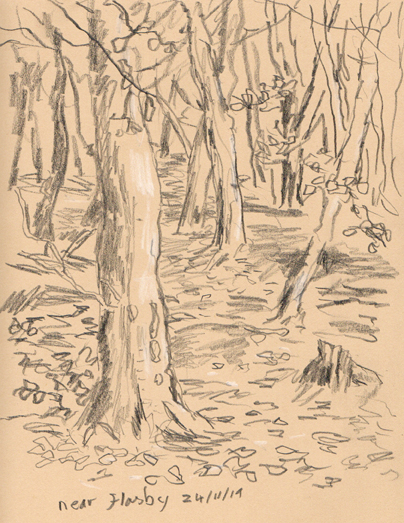 Wood near Flasby Fell, Yorkshire Dales. Sketch by Keith Melling