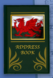 Little Welsh Dragon Address Book (Green)