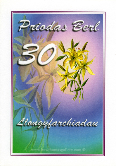 Pearl (30th) Wedding Anniversary Card in Welsh - Priodas Berl