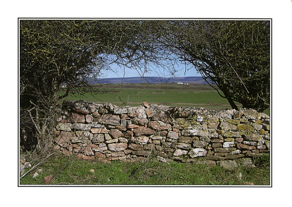 Dry stone wall at Sker, Porthcawl