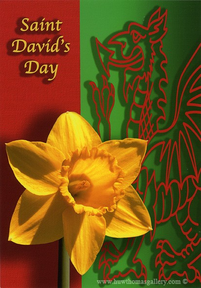 Saint David's Day Card - Welsh Greeting Card