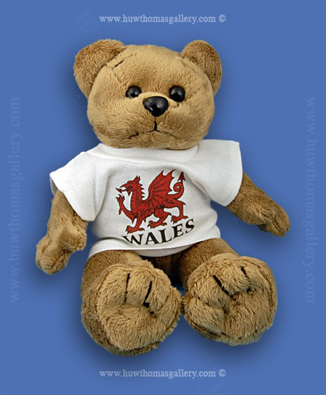 Welsh Teddy Bear with Welsh Dragon T-shirt