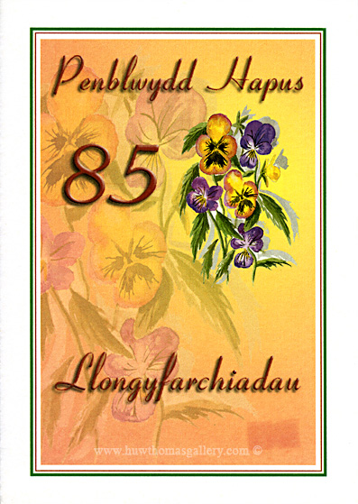 85th Welsh Birthday Card