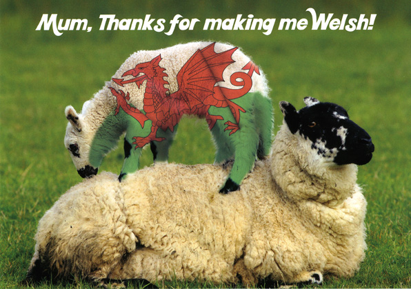 Mothers Day - Thanks for making me Welsh - Welsh Greeting Card