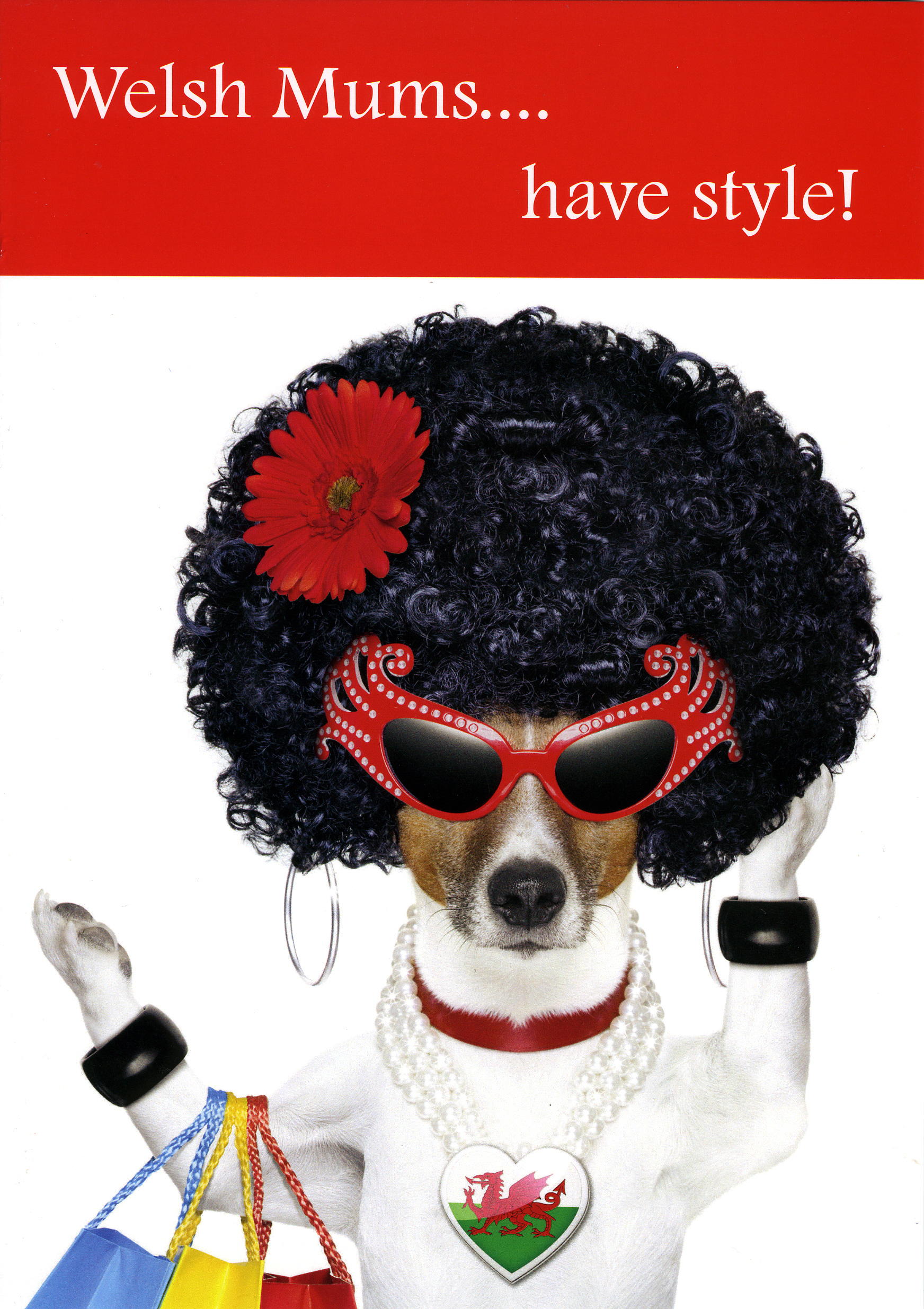 Mother's Day - Welsh Mums have style - Welsh Greeting Card