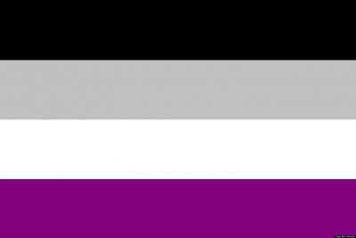 ASEXUAL FLAG 5x3