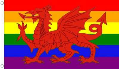 Rainbow Welsh Dragon 5x3