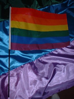 Pride Large Hand Wave Flag    £3.50