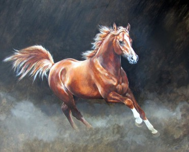 A Study of a Chestnut Arabian