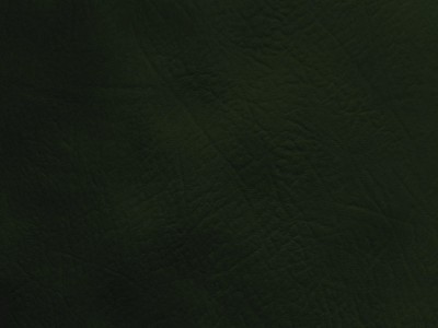 Antique Green Lexaire Vinyl