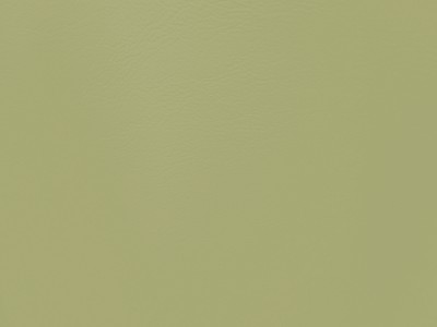 Plain Light Green Lexaire Vinyl
