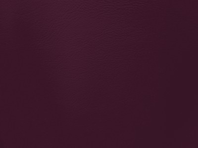 Plain Purple Lexaire Vinyl