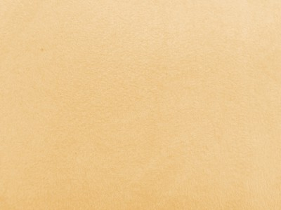 Cream Faux Suede Foam Backed Fabric F1342