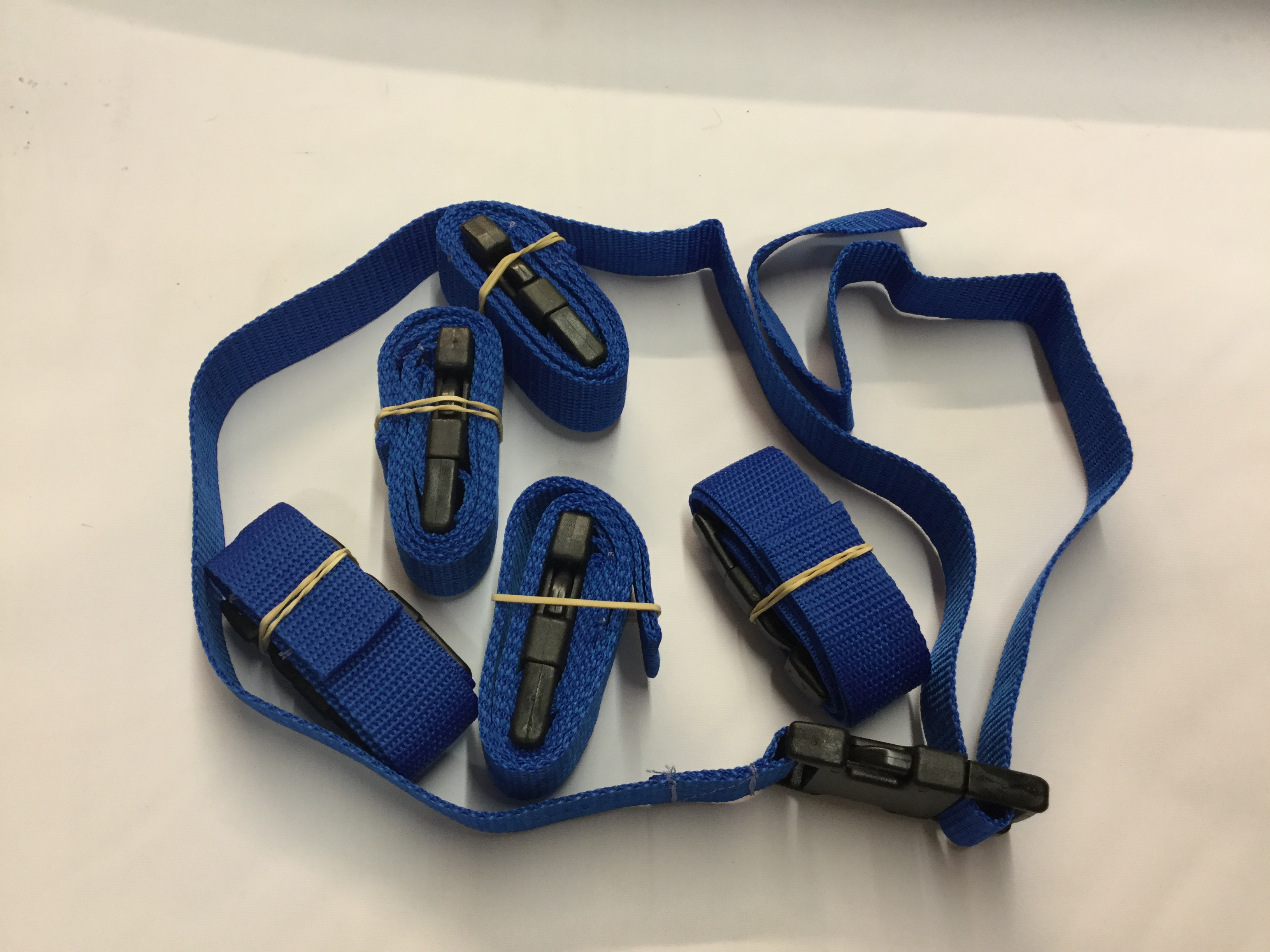 1 Mtr Webbing with Side Release Buckle Royal Blue