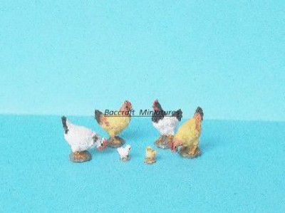 4 miniature chickens with 2 baby chicks