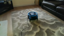 Rug cleaning West Lothian