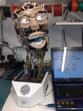 Robot Head Animatronic .Note :- Face built to customer specification.