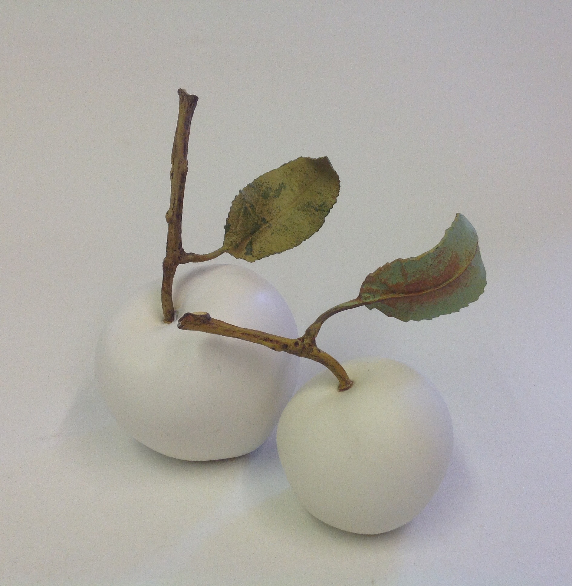 Windfall Apple with small twig & one leaf