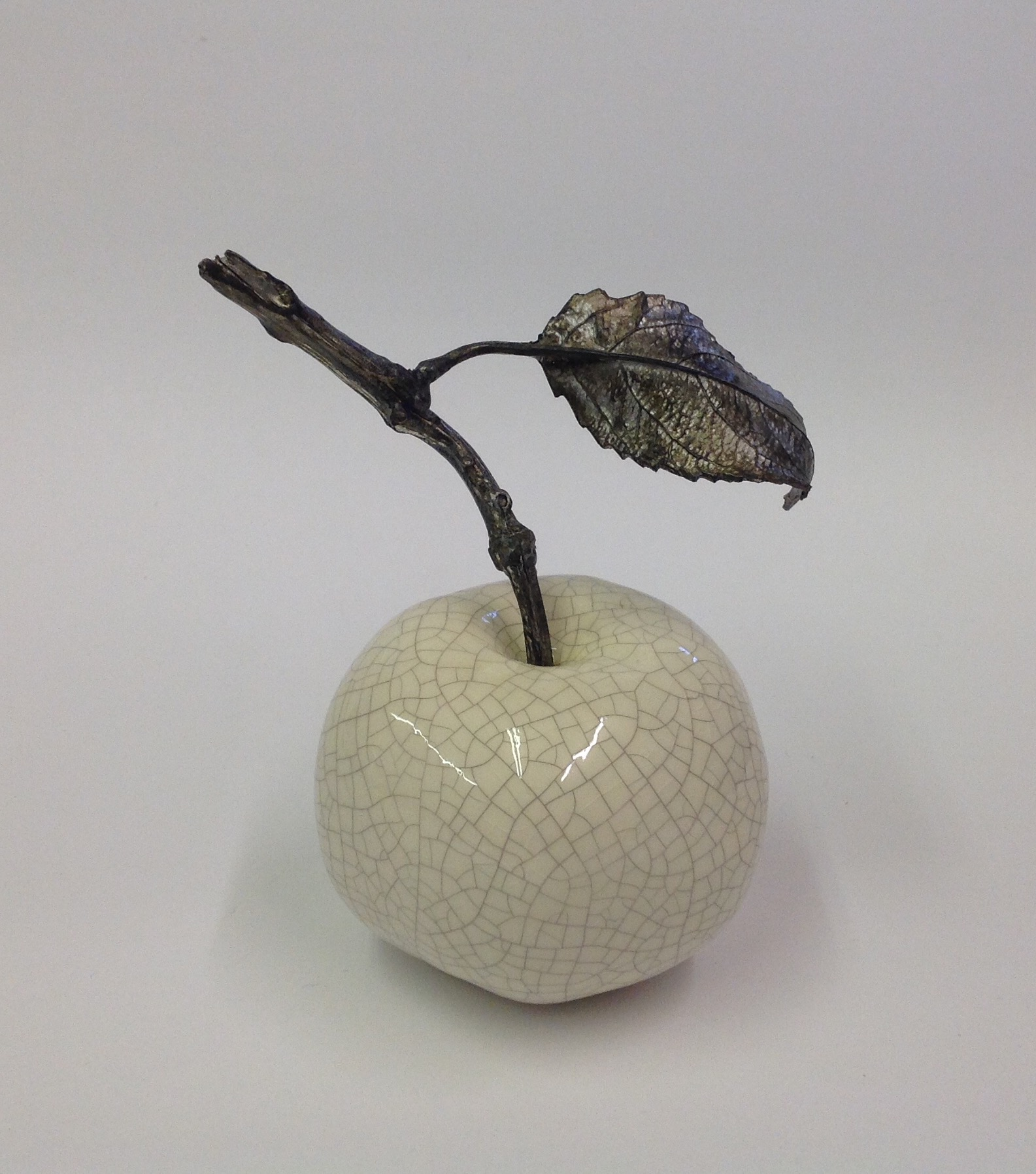Apple with twig & one leaf