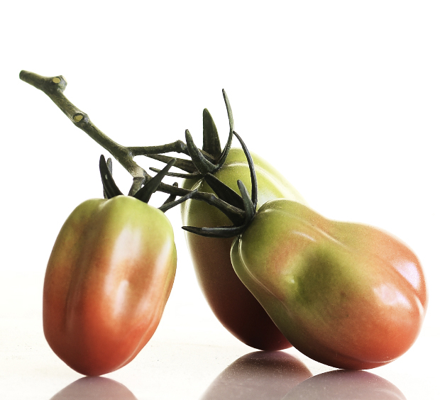 TRIPLE REGULAR & PLUM TOMATO VINE