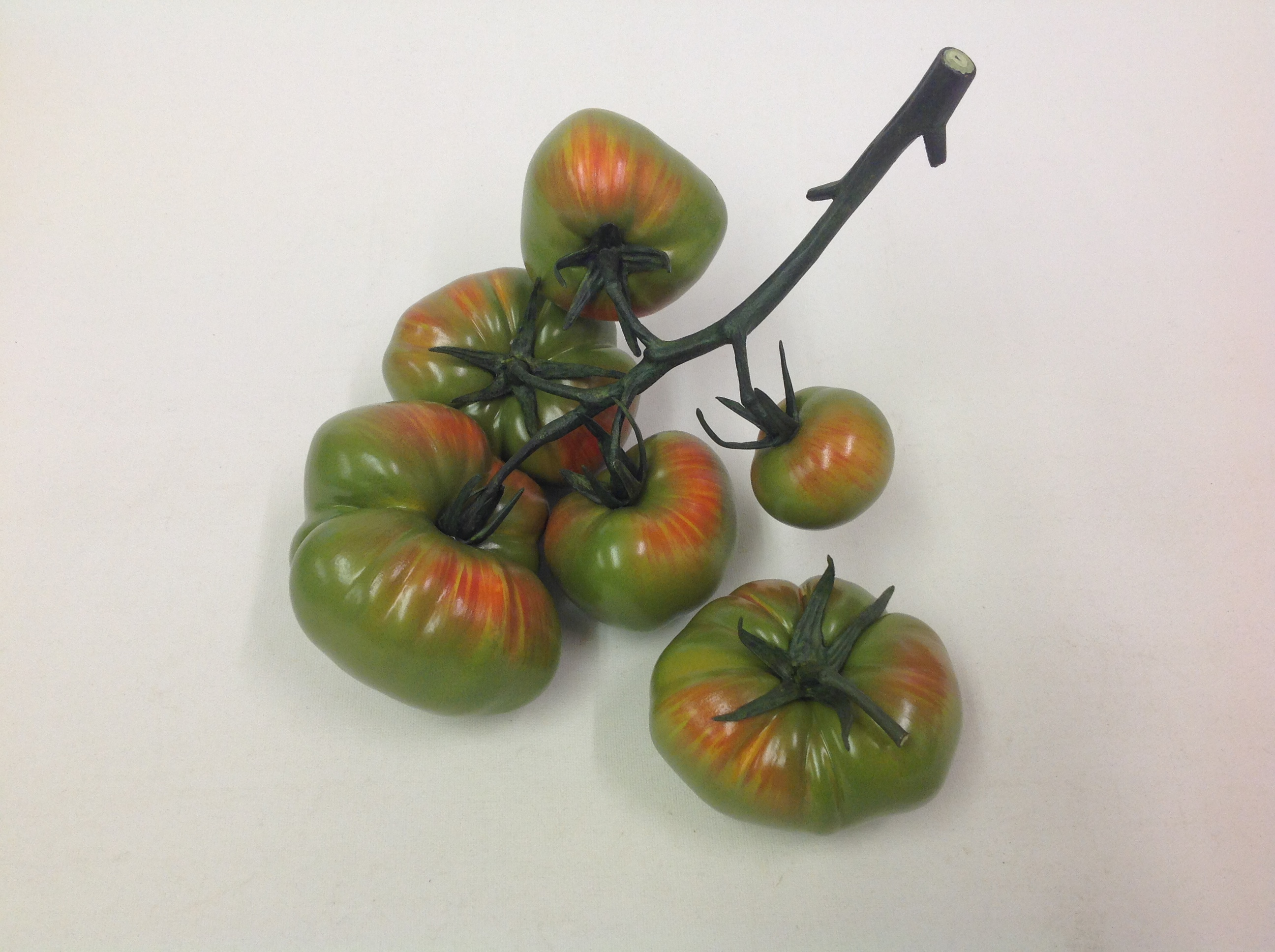 FIVE REGULAR & PLUM TOMATO VINE