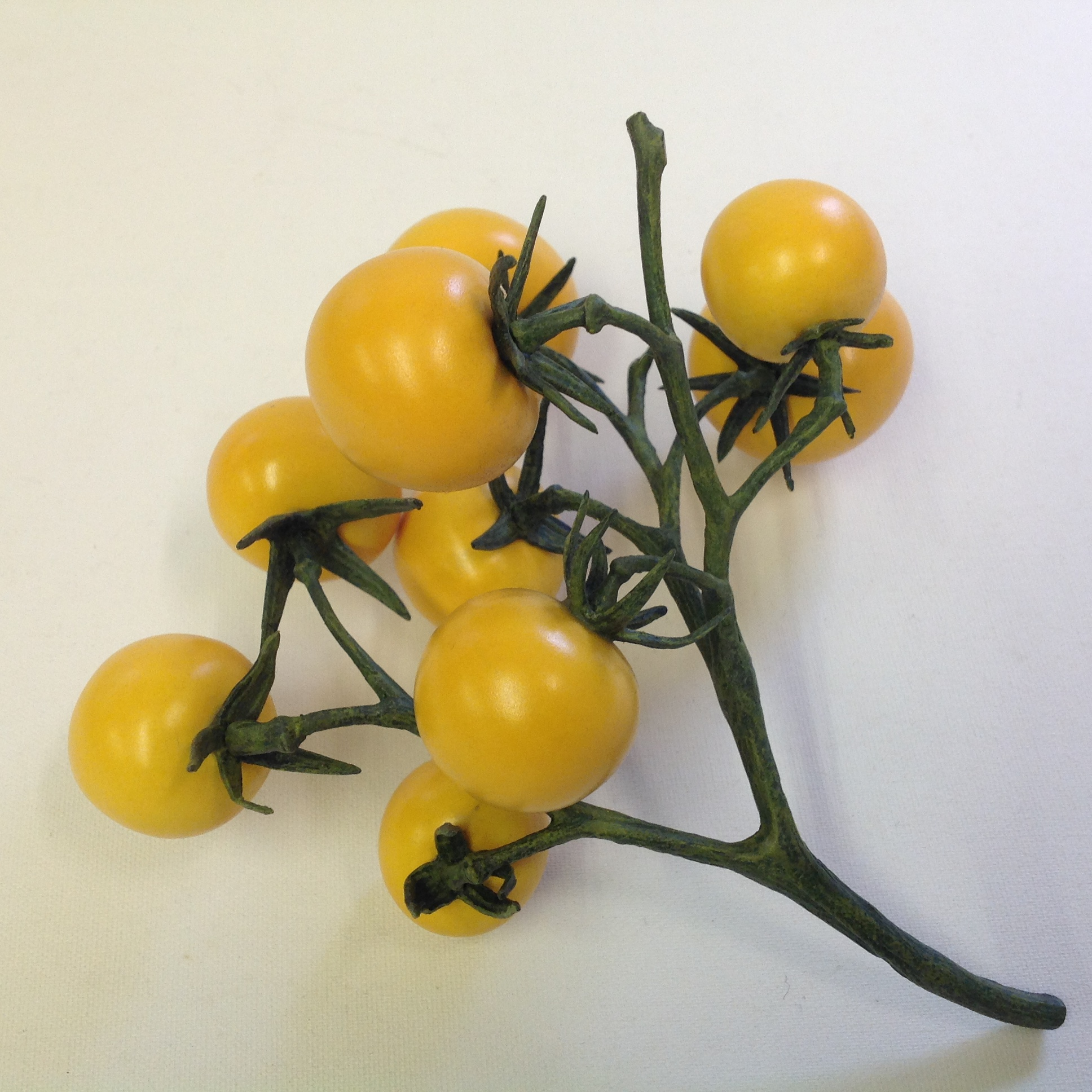 NINE CHERRY TOMATO VINE