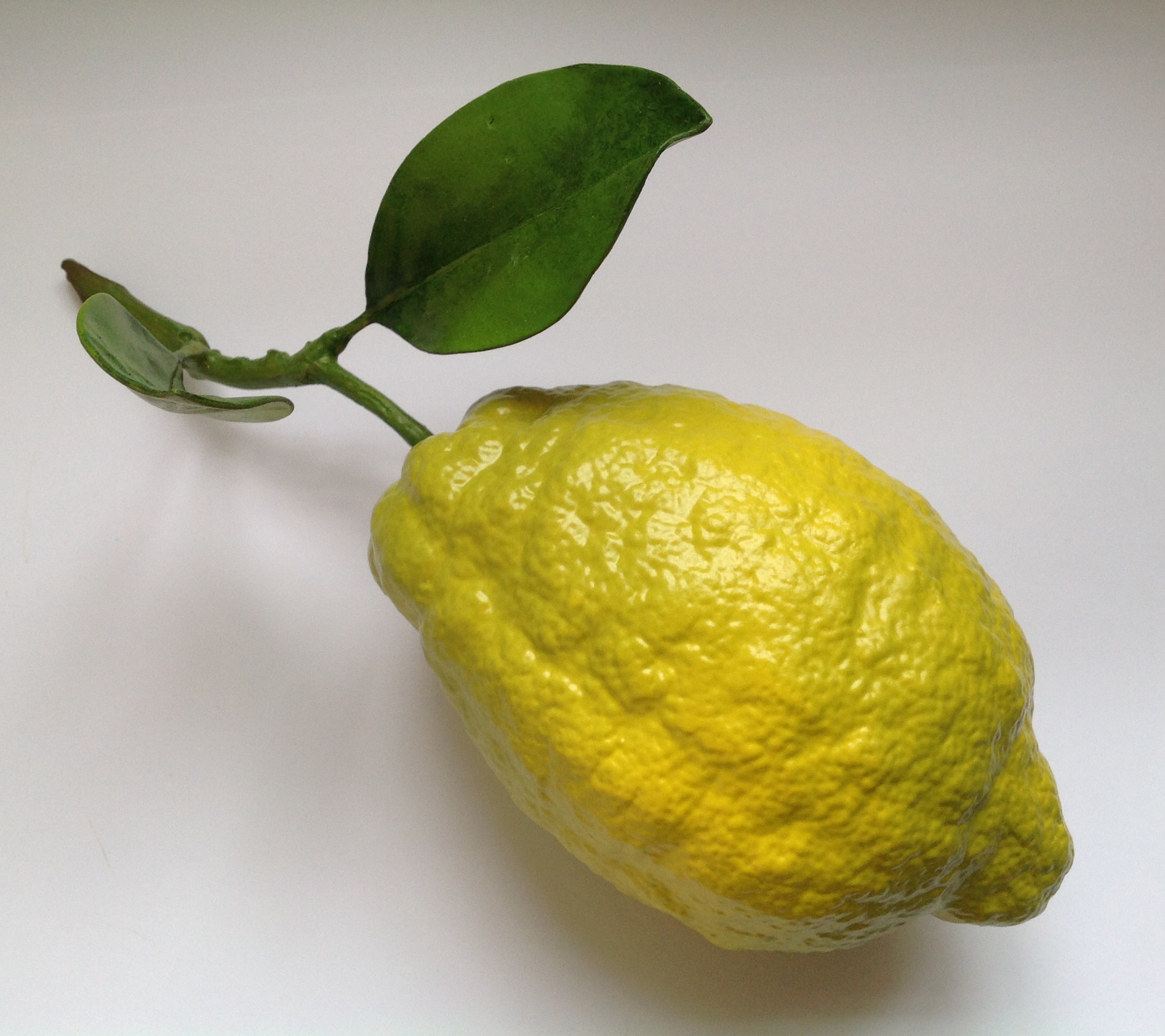 LEMON - GREEN ENDS
