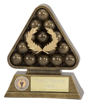 Pool/billiards/snooker Award