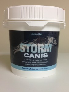 170 !!!NEW!!!storm canis