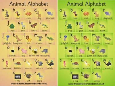 ANIMAL ALPHABET POSTER BOARD