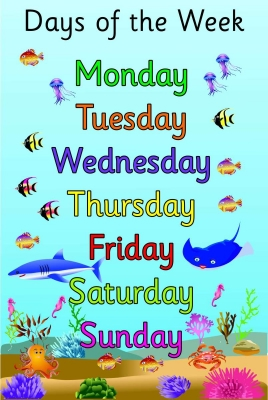 UNDER THE SEA DAYS OF THE WEEK POSTER BOARD