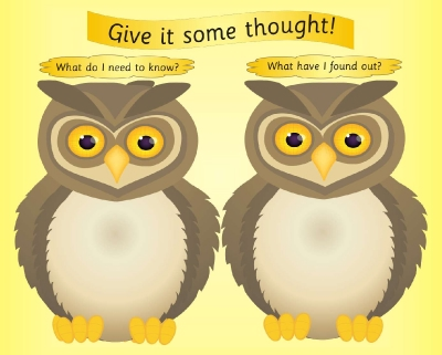 THOUGHTS - INVESTIGATION DRY/WIPE BOARD - WRITE ON WISE OWLS