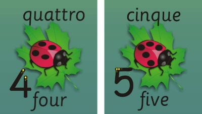 SET OF 11 INDIVIDUAL LADYBIRD NUMBER RECOGNITION & FORMATION PLAQUES - LANGUAGES