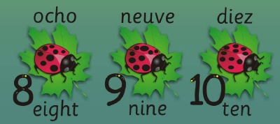 LADYBIRD NUMBER RECOGNITION & FORMATION WALL FRIEZE - LANGUAGES