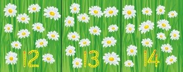 FLOWER NUMBER RECOGNITION  0-20 WALL FRIEZE